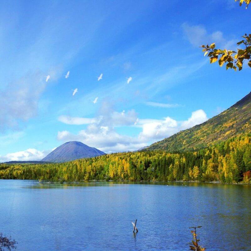 Фотоколлаж осень и стая журавлей к стихотворению Прекрасная пора дождей