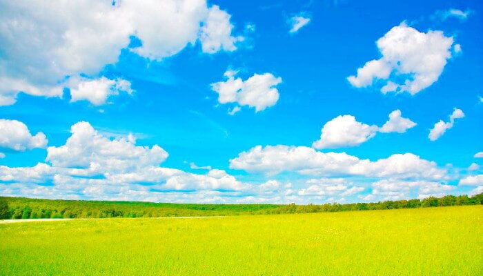 Стих С. Жачук - Ясным светом заливает Солнце синеву